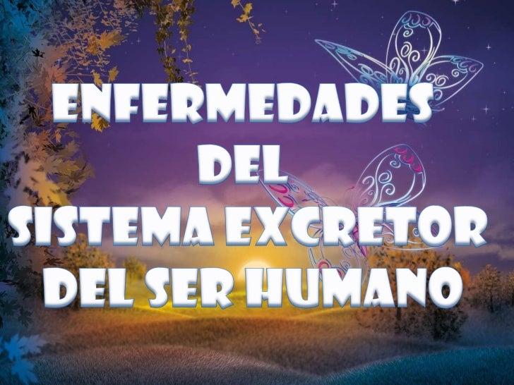 Enfermedades <br />del <br />sistema excretor<br /> del ser humano<br />
