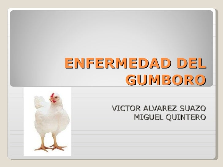 ENFERMEDAD DEL GUMBORO VICTOR ALVAREZ SUAZO MIGUEL QUINTERO