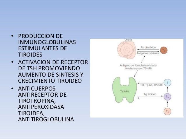 Anticuerpos antiperoxidasa