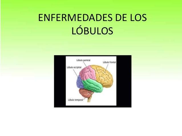 ENFERMEDADES DE LOS LÓBULOS