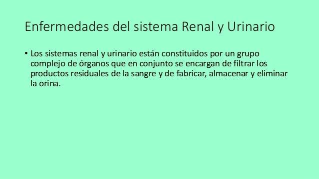 Enfermedades del sistema renal y urinario