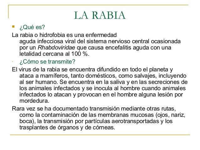 LA RABIA  ¿Qué es?La rabia o hidrofobia es una enfermedad   aguda infecciosa viral del sistema nervioso central ocasionad...