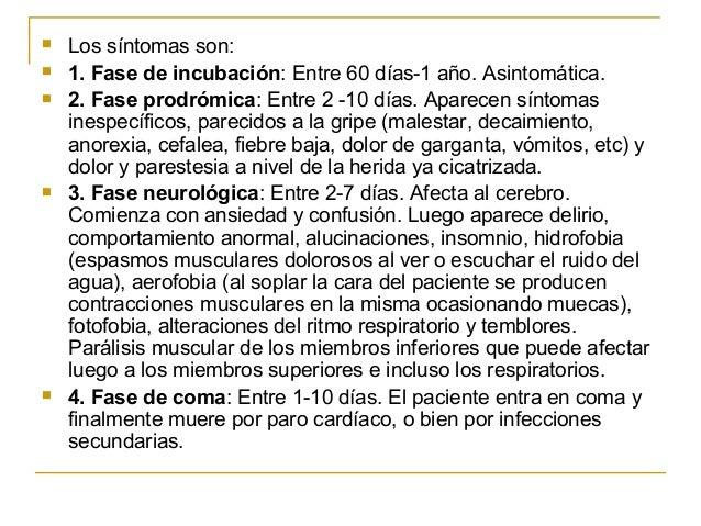    Los síntomas son:   1. Fase de incubación: Entre 60 días-1 año. Asintomática.   2. Fase prodrómica: Entre 2 -10 días...