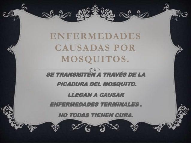 ENFERMEDADES  CAUSADAS POR  MOSQUITOS.  SE TRANSMITEN A TRAVÉS DE LA  PICADURA DEL MOSQUITO.  LLEGAN A CAUSAR  ENFERMEDADE...