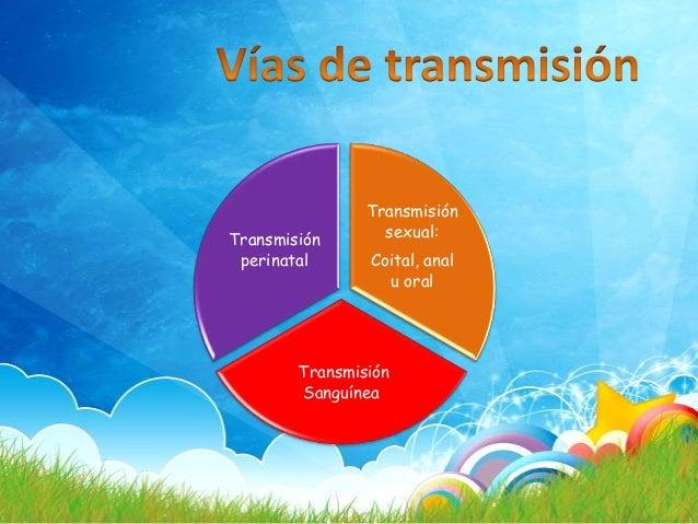 Los agentes productores de las infecciones de transmisión sexual incluyen: Bacterias Virus Hongos Protozoos