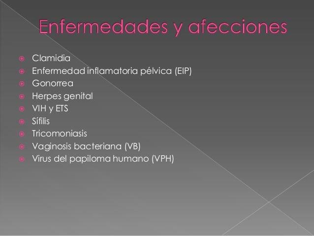    ¿Qué es la clamidia?   La clamidia es una enfermedad de transmisión sexual (ETS)    común, causada por una bacteria. ...