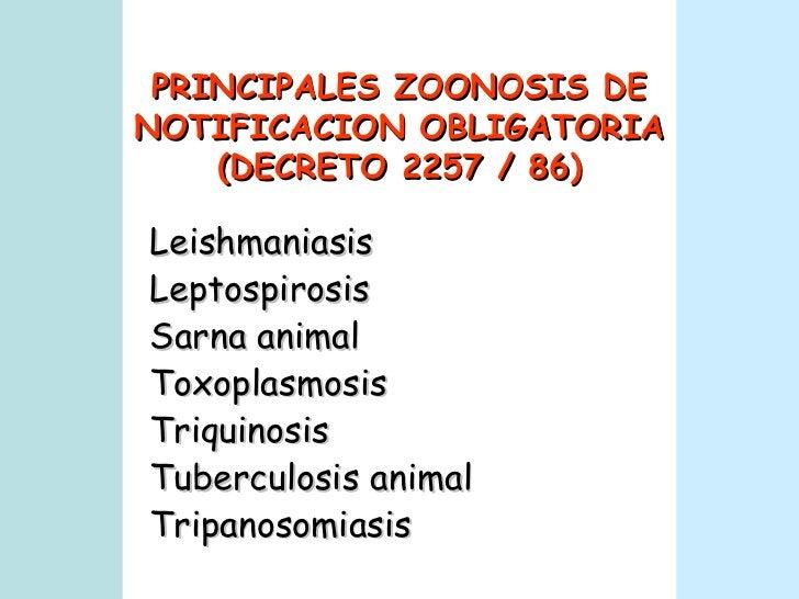PRINCIPALES ZOONOSIS DE NOTIFICACION OBLIGATORIA (DECRETO 2257 / 86) Leishmaniasis Leptospirosis Sarna animal Toxoplasmosi...