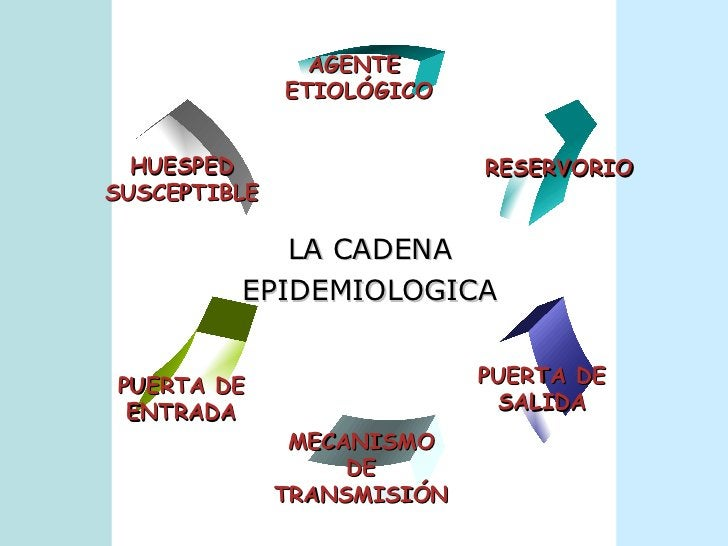 <ul><li>LA CADENA </li></ul><ul><li>EPIDEMIOLOGICA </li></ul>RESERVORIO PUERTA DE SALIDA MECANISMO DE TRANSMISIÓN PUERTA D...