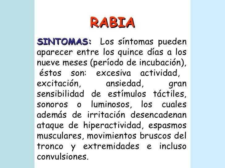 RABIA SINTOMAS:   Los síntomas pueden aparecer entre los quince días a los nueve meses (período de incubación),  éstos son...