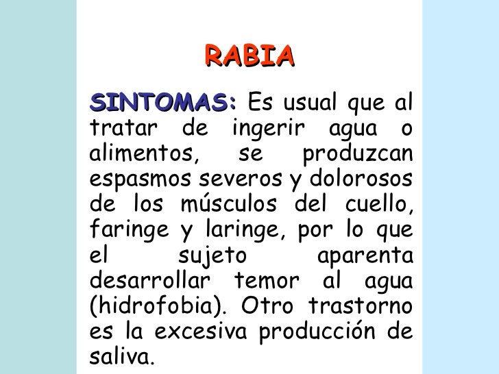 RABIA SINTOMAS:  Es usual que al tratar de ingerir agua o alimentos, se produzcan espasmos severos y dolorosos de los músc...