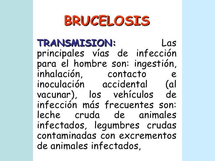 BRUCELOSIS TRANSMISION:   Las principales vías de infección para el hombre son: ingestión, inhalación, contacto e inoculac...