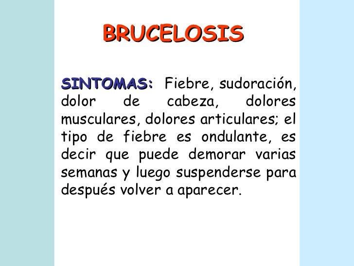 BRUCELOSIS SINTOMAS:   Fiebre, sudoración, dolor de cabeza, dolores musculares, dolores articulares; el tipo de fiebre es ...