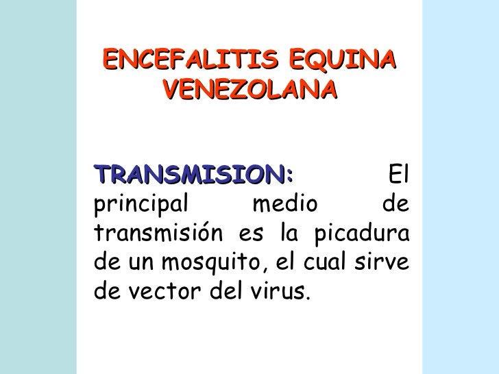 ENCEFALITIS EQUINA VENEZOLANA TRANSMISION:   El principal medio de transmisión es la picadura de un mosquito, el cual sirv...