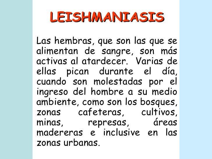 LEISHMANIASIS Las hembras, que son las que se alimentan de sangre, son más activas al atardecer.  Varias de ellas pican du...