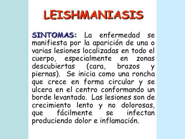 LEISHMANIASIS SINTOMAS:  La enfermedad se manifiesta por la aparición de una o varias lesiones localizadas en todo el cuer...