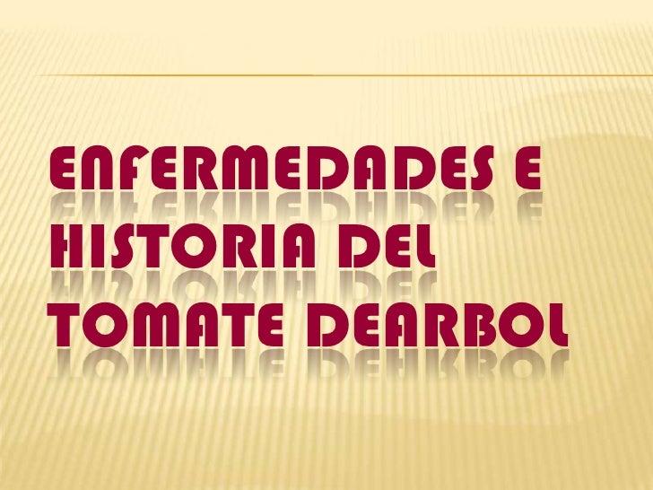 ENFERMEDADES E HISTORIA DEL TOMATE DEARBOL<br />