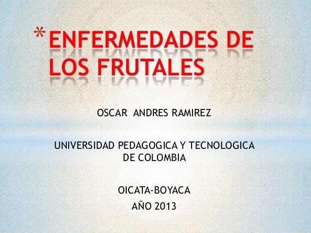 * ENFERMEDADES DE LOS FRUTALES  OSCAR ANDRES RAMIREZ UNIVERSIDAD PEDAGOGICA Y TECNOLOGICA DE COLOMBIA OICATA-BOYACA  AÑO 2...