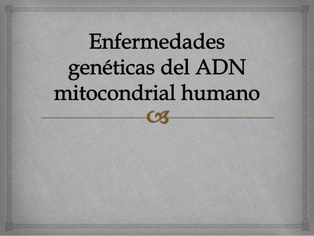 Enfermedades genéticas del ADN  mitocondrial humano     Las enfermedades mitocondriales son un grupo de  trastornos que ...