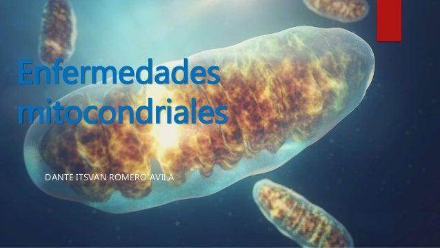Enfermedades mitocondriales DANTE ITSVAN ROMERO AVILA