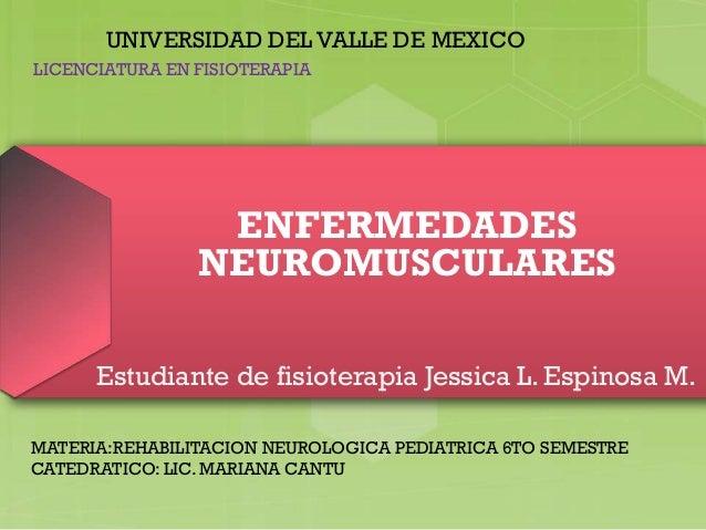 ENFERMEDADES NEUROMUSCULARES Estudiante de fisioterapia Jessica L. Espinosa M. UNIVERSIDAD DEL VALLE DE MEXICO MATERIA:REH...