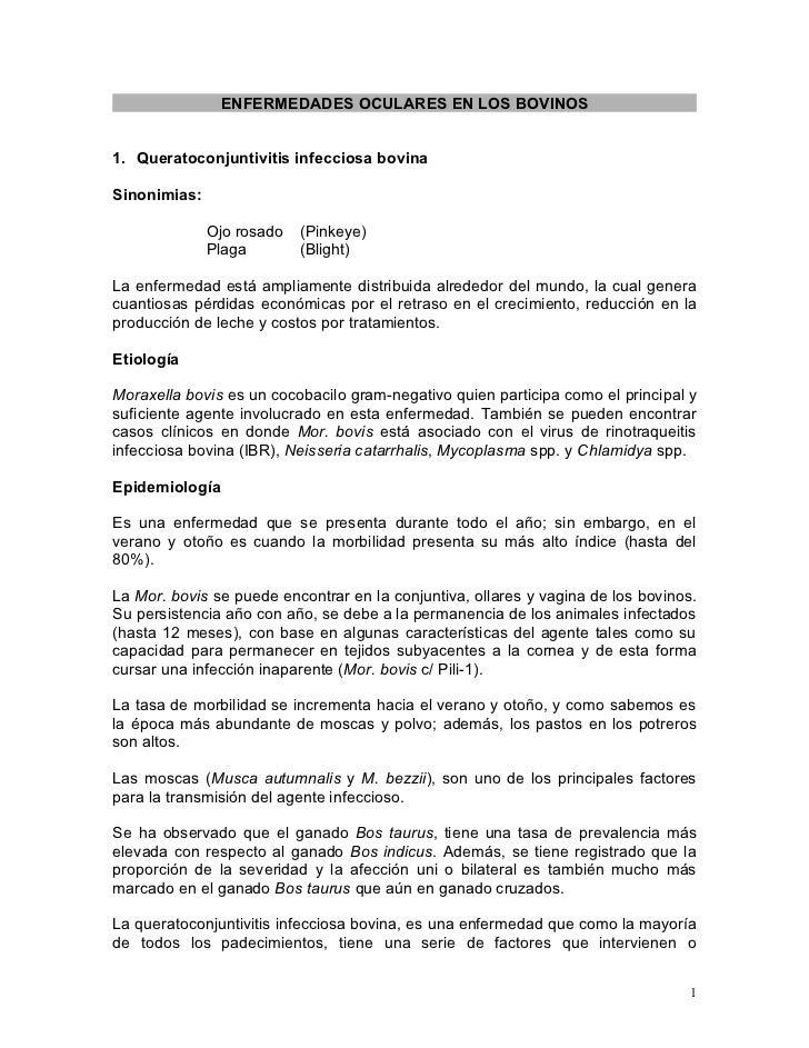 ENFERMEDADES OCULARES EN LOS BOVINOS1. Queratoconjuntivitis infecciosa bovinaSinonimias:              Ojo rosado   (Pinkey...