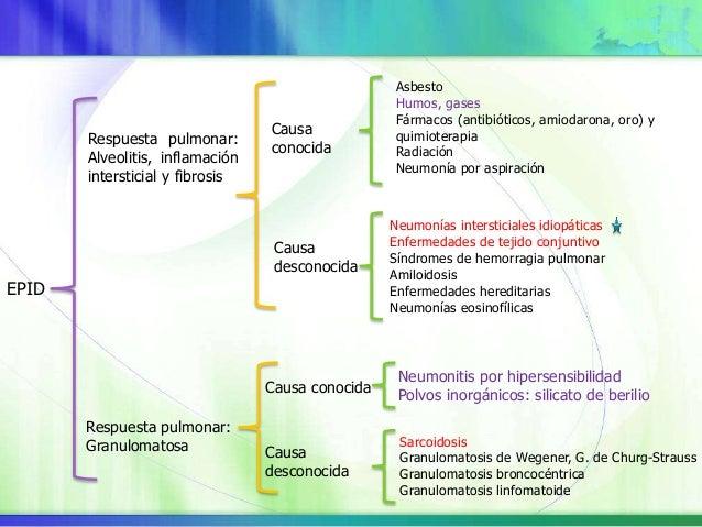 Estímulos exógenos y endógenos Lesión pulmonar microscópica: Separación espacial y temporal Intacta Cicatrización de herid...