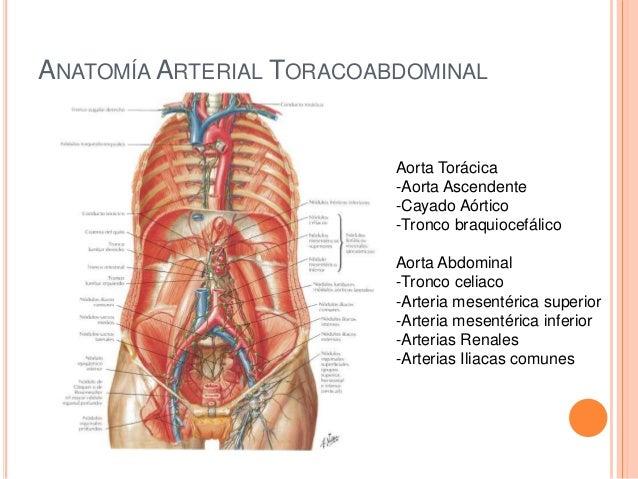 Enfermedades vasculares
