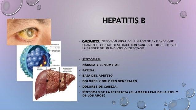 HEPATITIS B • CAUSANTES: INFECCIÓN VIRAL DEL HÍGADO SE EXTIENDE QUE CUANDO EL CONTACTO SE HACE CON SANGRE O PRODUCTOS DE L...