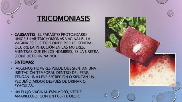 TRICOMONIASIS • CAUSANTES: EL PARÁSITO PROTOZOARIO UNICELULAR TRICHOMONAS VAGINALIS. LA VAGINA ES EL SITIO DONDE POR LO GE...