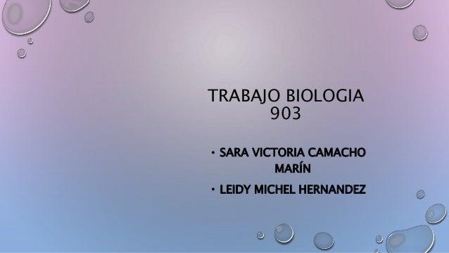 TRABAJO BIOLOGIA 903 • SARA VICTORIA CAMACHO MARÍN • LEIDY MICHEL HERNANDEZ