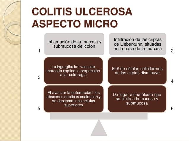 COLITIS ULCEROSA ASPECTO MICRO Inflamación de la mucosa y submucosa del colon  1  3  5  La ingurgitación vascular marcada ...