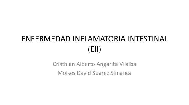 ENFERMEDAD INFLAMATORIA INTESTINAL (EII) Cristhian Alberto Angarita Vilalba Moises David Suarez Simanca