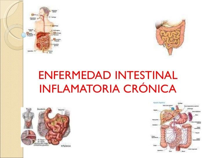 ENFERMEDAD INTESTINAL INFLAMATORIA CRÓNICA