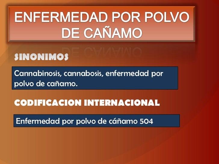 ENFERMEDAD POR POLVO DE CAÑAMO<br />SINONIMOS<br />Cannabinosis, cannabosis, enfermedad por polvo de cañamo.<br />CODIFICA...
