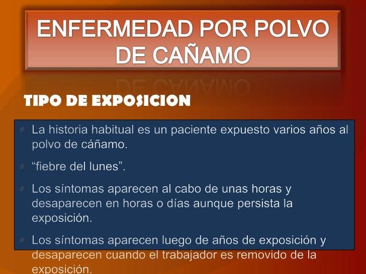 ENFERMEDAD POR POLVO DE CAÑAMO<br />TIPO DE EXPOSICION<br />La historia habitual es un paciente expuesto varios años al po...