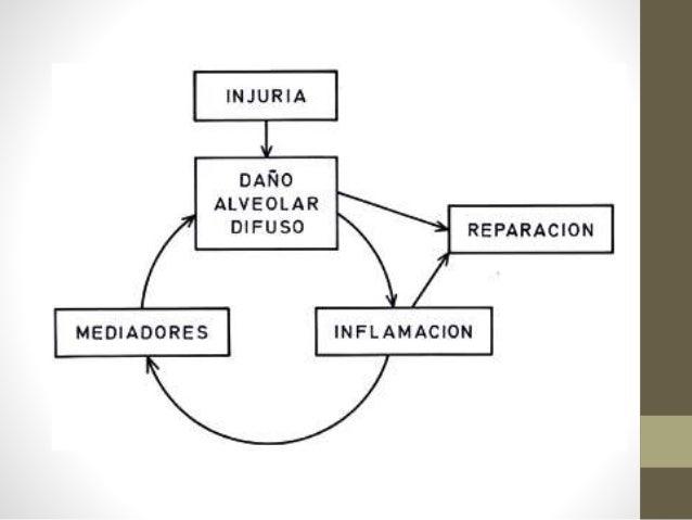 Fisiopatología • Disminución de la distensibilidad pulmonar: aumento de la rigidez del intersticio como a la obliteración ...