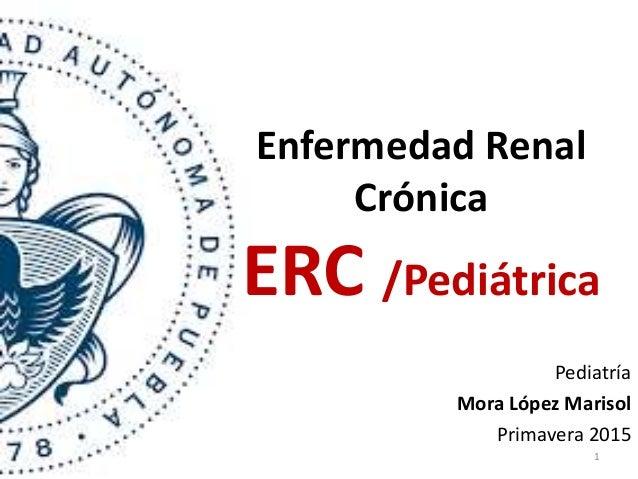 Enfermedad Renal Crónica ERC /Pediátrica Pediatría Mora López Marisol Primavera 2015 1
