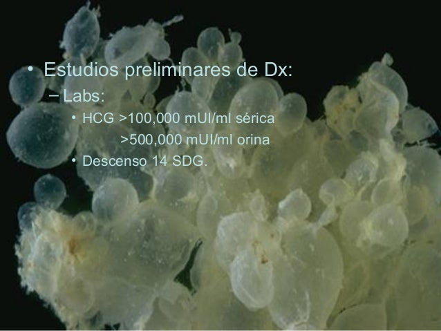 • Estudios preliminares de Dx: – Labs: • HCG >100,000 mUI/ml sérica >500,000 mUI/ml orina • Descenso 14 SDG.
