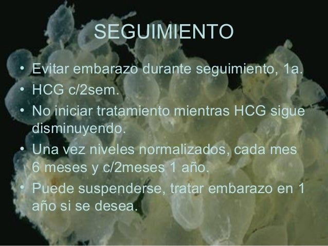 SEGUIMIENTO • Evitar embarazo durante seguimiento, 1a. • HCG c/2sem. • No iniciar tratamiento mientras HCG sigue disminuye...