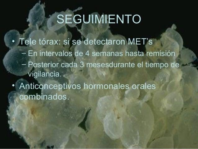 SEGUIMIENTO • Tele tórax: si se detectaron MET's – En intervalos de 4 semanas hasta remisión – Posterior cada 3 mesesduran...