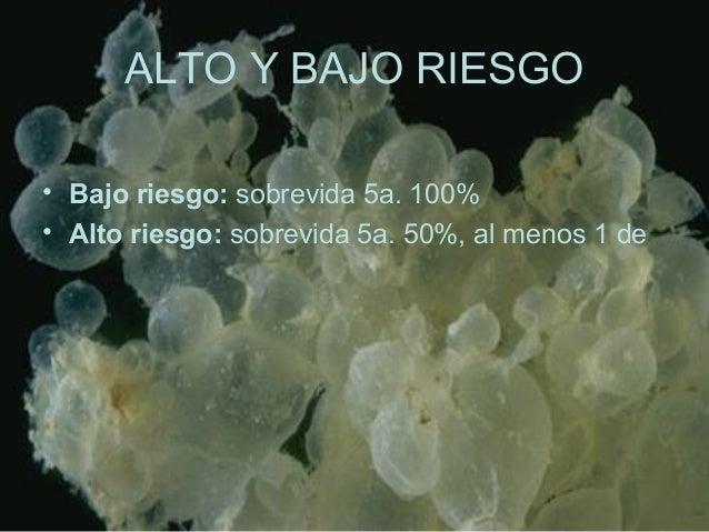 ALTO Y BAJO RIESGO • Bajo riesgo: sobrevida 5a. 100% • Alto riesgo: sobrevida 5a. 50%, al menos 1 de