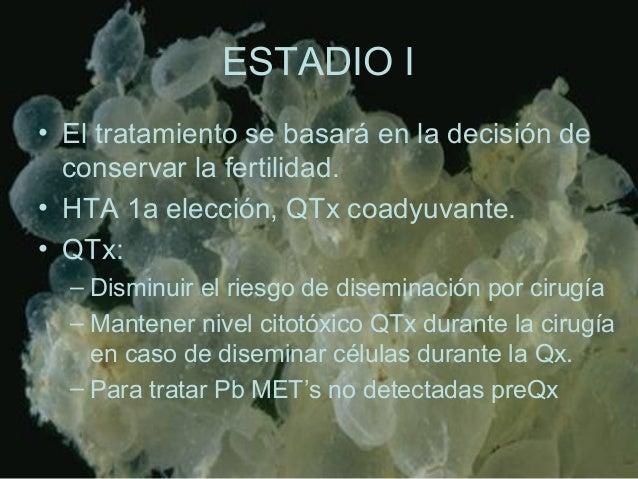 ESTADIO I • El tratamiento se basará en la decisión de conservar la fertilidad. • HTA 1a elección, QTx coadyuvante. • QTx:...