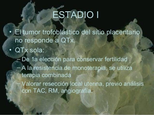 ESTADIO I • El tumor trofoblástico del sitio placentario no responde a QTx. • QTx sola: – De 1a elección para conservar fe...
