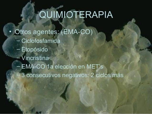QUIMIOTERAPIA • Otros agentes: (EMA-CO) – Ciclofosfamida – Etopósido – Vincristina – EMA-CO 1a elección en MET's – 3 conse...
