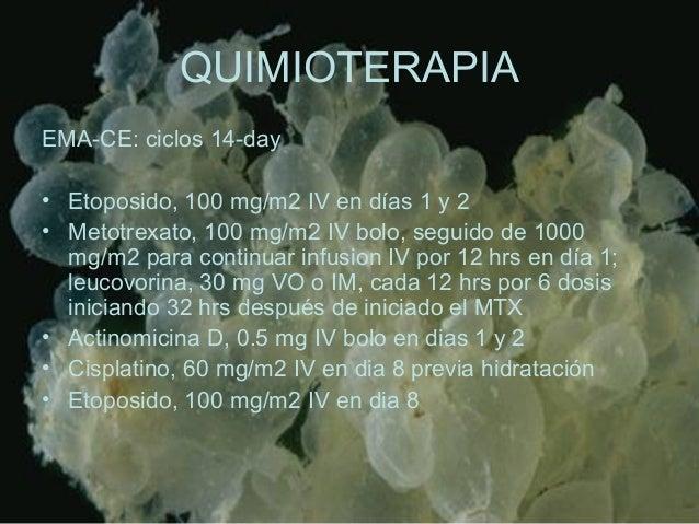 QUIMIOTERAPIA EMA-CE: ciclos 14-day • Etoposido, 100 mg/m2 IV en días 1 y 2 • Metotrexato, 100 mg/m2 IV bolo, seguido de 1...