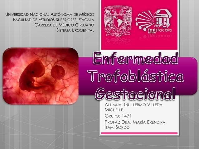 UNIVERSIDAD NACIONAL AUTÓNOMA DE MÉXICO    FACULTAD DE ESTUDIOS SUPERIORES IZTACALA              CARRERA DE MÉDICO CIRUJAN...