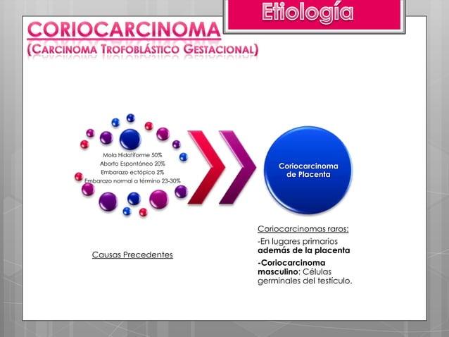 -Proliferación neoplásica del trofoblasto intermedio-Intervalo largo entre el embarazo y el momento de aparición del tumor...