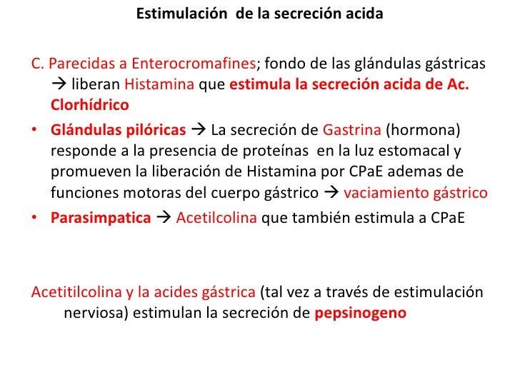 Estimulación  de la secreción acida<br />C. Parecidas a Enterocromafines; fondo de las glándulas gástricas  liberan Hista...