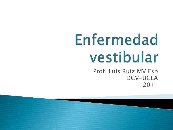 Prof. Luis Ruiz MV Esp            DCV-UCLA                 2011