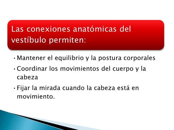 Desde canales                                semicirculares         Superior                Desde el utrículoMedial       ...